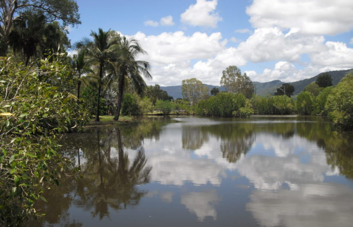Centenary Lake - Cairns