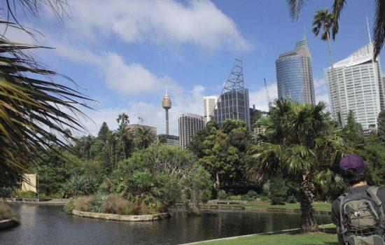 Botanic Garden - Sydney