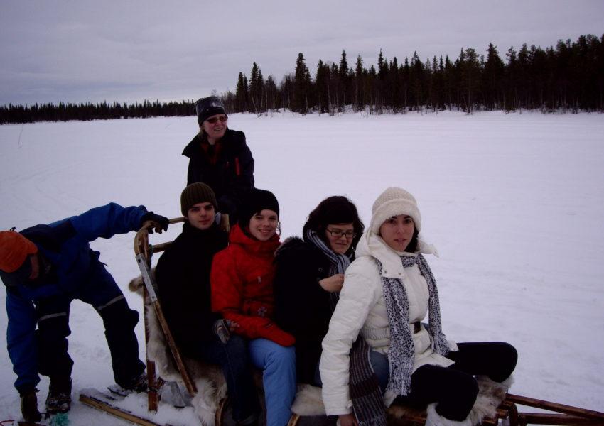 Laponie Finlandaise : chiens de traîneaux
