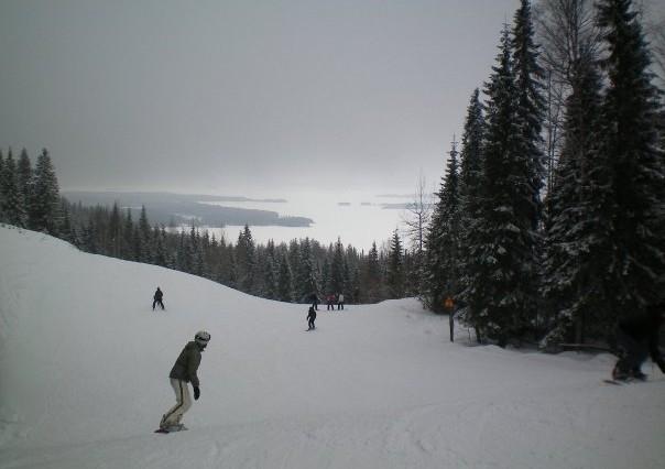 Koli - Finlande