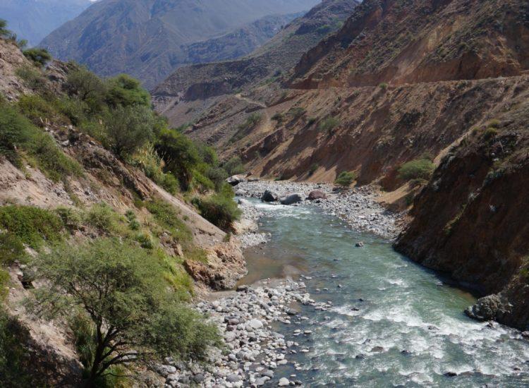 Canyon del colca - Aréquipa - Pérou