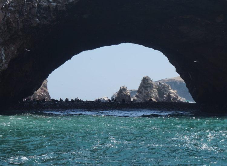 Paracas - Islas Ballestas - Pérou