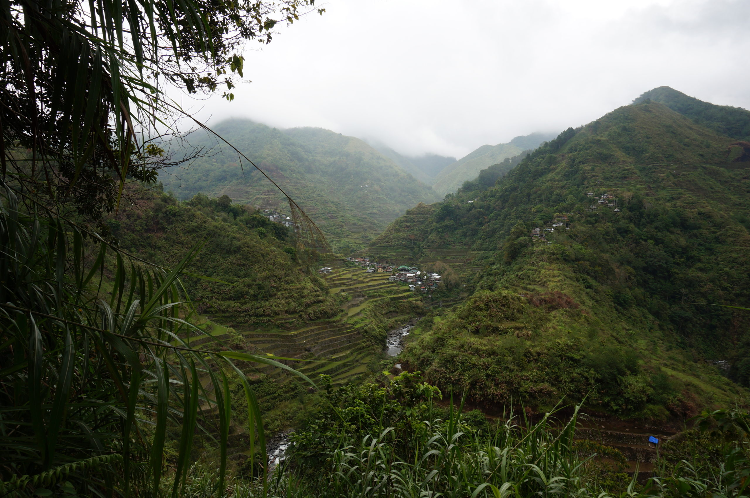 Batad rizières - Philippines