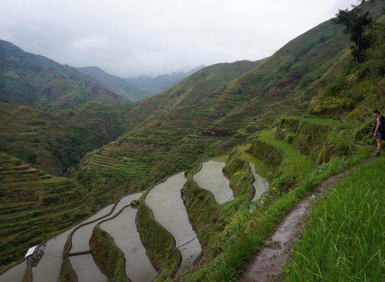 Trek Rizières entre Cambulo et Pula - Philippines