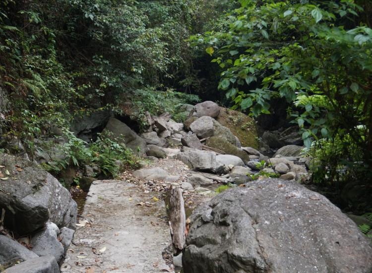 Casaroro falls- Dumaguete - Negros - Philippines