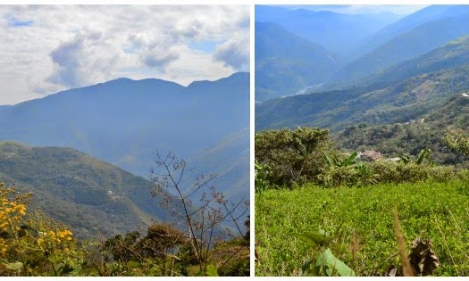 YUNGAS- Bolivie