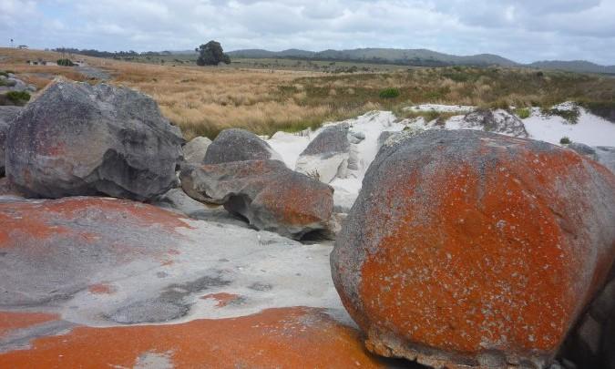 Bay fire..St Helens - tasmanie - australie