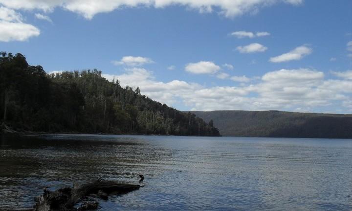 Lac saint clair tasmanie australie