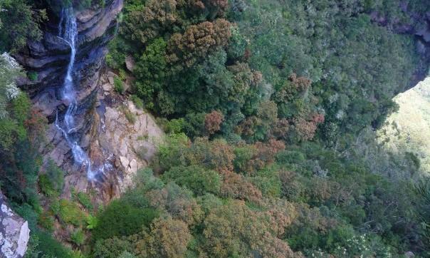 Leura falls blue mountains australie