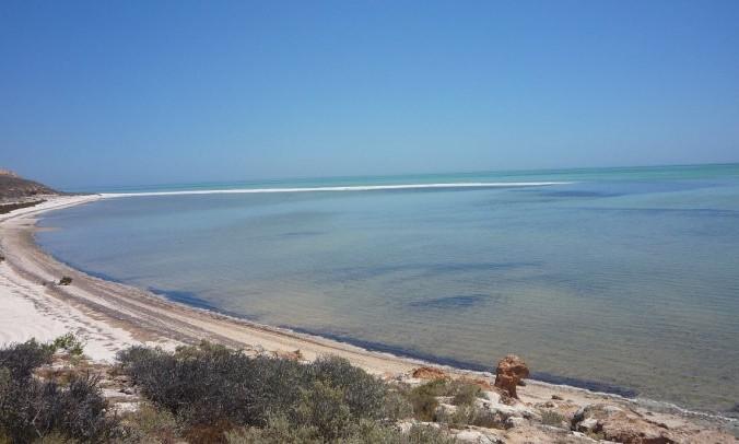 Shell Bay Australie