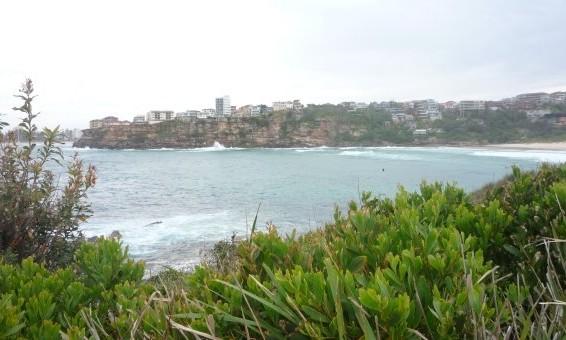 plage freswwater australie