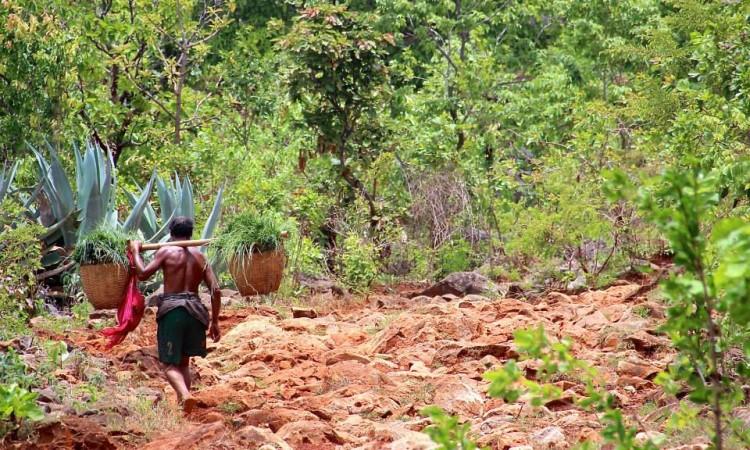 Trek Pays Shan - Birmanie