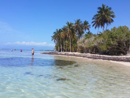 Plage de bois Jolan - Guadeloupe