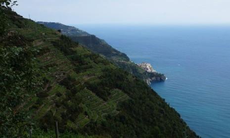 Chemin Vernazza - Coniglia - Cinqueterre - Italie