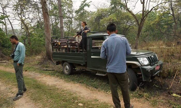 Safari - Chitwan - Népal