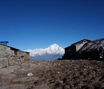 Lodge Kophra - Annapurnas - Népal