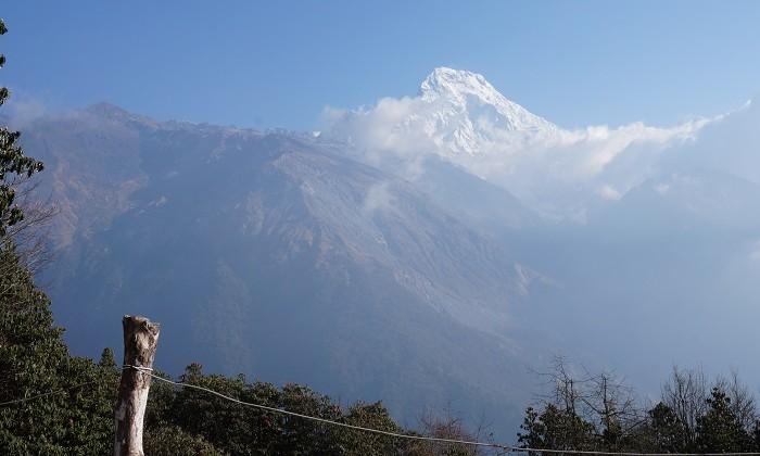 Mesra - Trek Annapurnas - Népal
