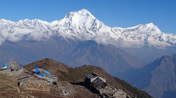 Kophra - Trek Annapurnas - Népal