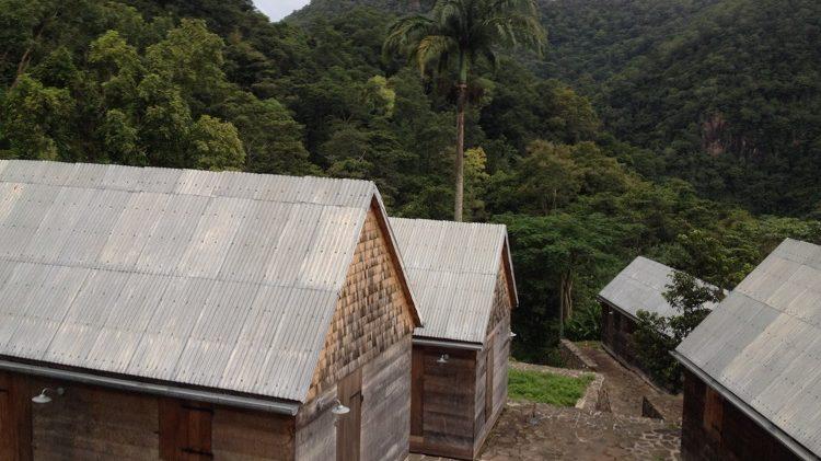 La Grivelière - Basse Terre - Guadeloupe