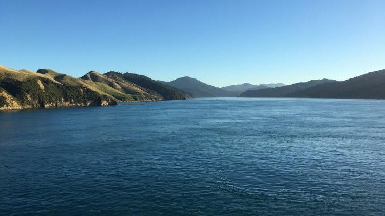 Croisière entre île du sud et du nord - Nouvelle Zélande