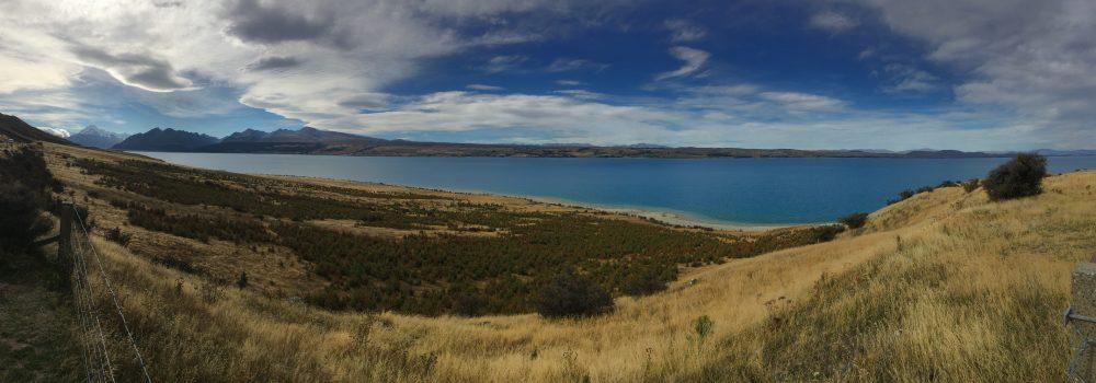 Pukaki Lake