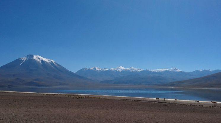 Laguna Miscanti_ San pedro de atacama_ Chili