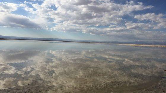 Laguna Chaxa_San pedro de atacama_ Chili