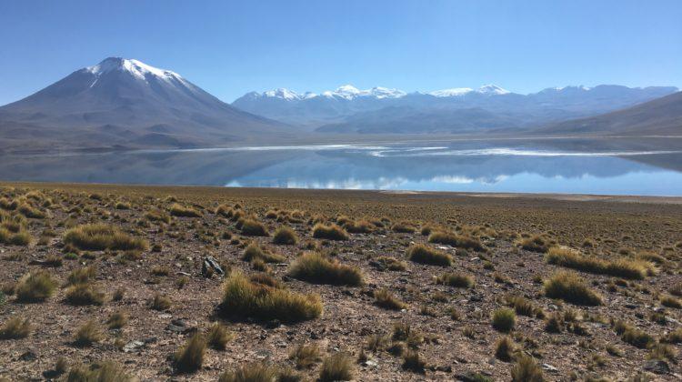 Laguna Miscanti_San pedro de atacama_ Chil
