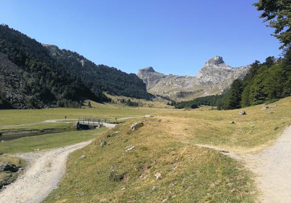 Randonnée Pyrénées lac ayous, chemin dans la vallée