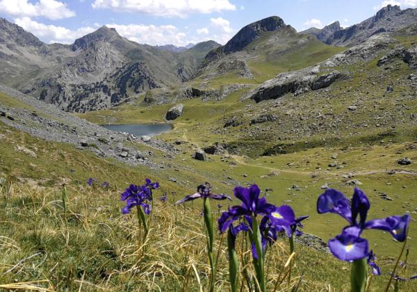 Randonnée Pyrénées lac ayous
