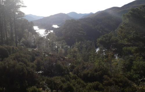 Glen africa_Ecosse : petit lac entouré de forêt