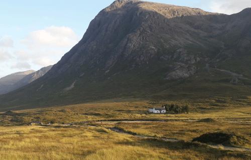 Glencoe_Ecosse : paysage sauvage avec une montagne en fond et de l'herbe jaune devant