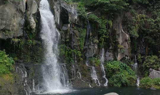 Bassin_des_cormorans_La Réunion