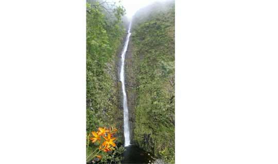 Cascade Biberon - La Réunion