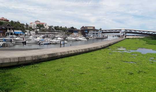 Saint Gilles- La Réunion